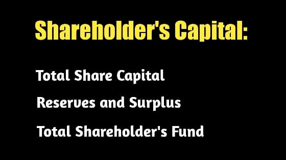 Shareholder's Capital