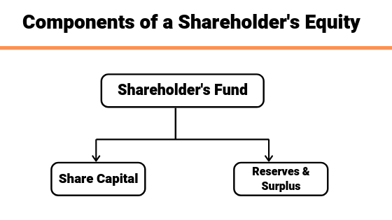 shareholder's equity classification